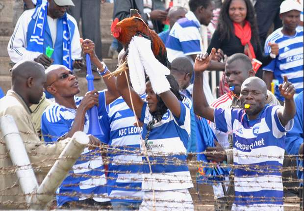 Inside AFC Leopards New App to Help Streamline Operations at the Den