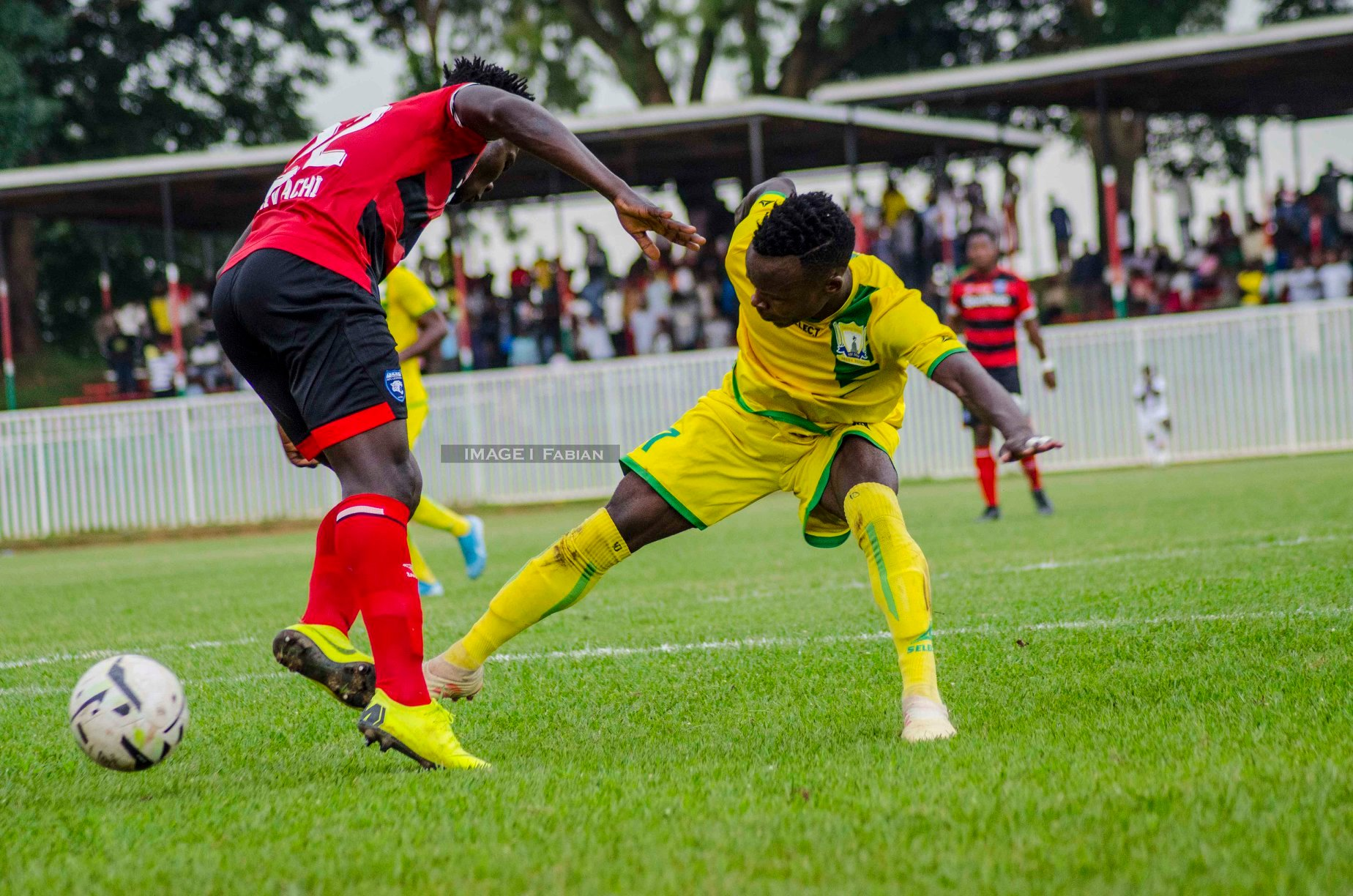 AFC Leopards' Fall in Bukhungu as Chemelil is Condemned to the Zoo